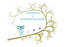 Fotosintesis y La Respiracion Celular