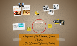 Componets of the Criminal Justice System