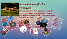 Copy of Locomoția mamiferelor vertebrate