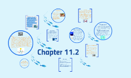 Copy of Chapter 11.2