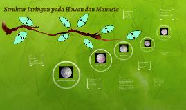 Struktur Jaringan pada Hewan