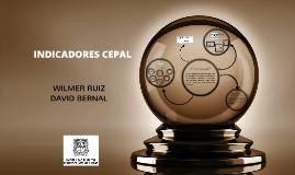 INDICADORES CEPAL