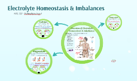 Electrolyte Homeostasis & Imbalances