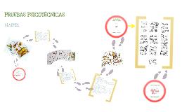 Copy of Prueba Naipes