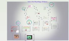 Unit 2 The Physiology of Fitness