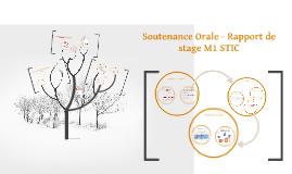 Soutenance Orale - Rapport de stage M1