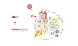 MMR y Neumococo