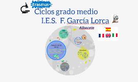 Copia de Erasmus+ Ciclos grado medio