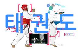태 권 도