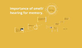 Importance of smell/