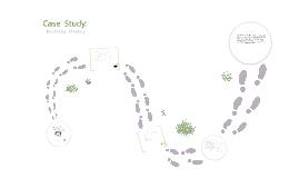 Case study: Building fluency