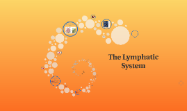 BTEC Unit 2: The Lymphatic System