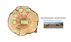 Copy of INTERNATIONAL WOOD GROUP