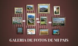 MI GALERIA DE FOTOS