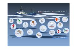 Quanto tempo dura o lixo no fundo do mar?