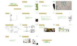 PlantsFriends TIC