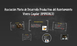 2 AMPROACO - Presentación para el Inder