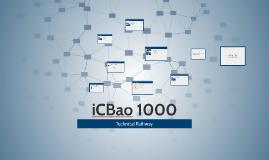 iCBao 1000