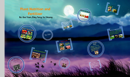 Plant Nutrition and Fertilizer