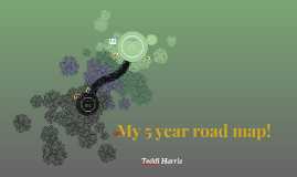 My 5 year road map!