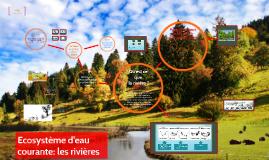 Ecosystème d'eau courante: les rivières