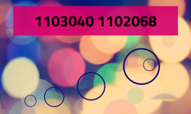 1103040 1102068