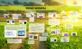 Copy of REINO MONERA
