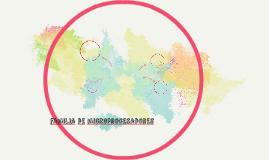 familia de microprocesadores