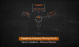 Zapatería, Cueros y Maroquinería