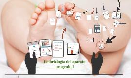 Copy of Embriología del aparato urogenital