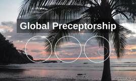 Global Preceptorship