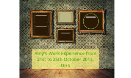 Amy's Work Experience from 21st to 25th October 2013, DHS