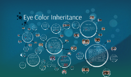 2017-2018 Eye Color Inheritance