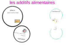 Copy of les additifs alimantaires