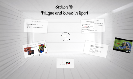 Copy of Copy of Fatigue and Stress in Sport