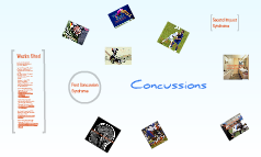Concussions on the Sports Field