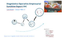Copy of Diagnóstico Operativo Empresarial - Sunshine Export SAC