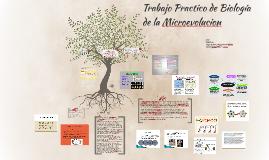 Trabajo Practico de Biologia de la Microevolucion