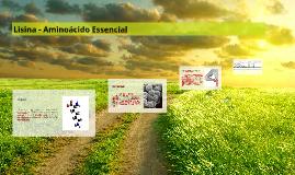 Lisina - Aminoácido Essencial