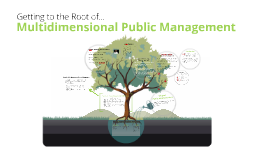 Copy of Multidimensional Public Management 6062