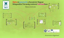 Bázis és potenciál a Romániai Magyar Közgazdász Társaság szakmai hálózatában