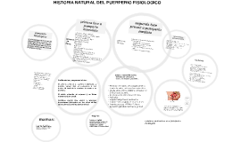 Copy of puerperio fisiologico: