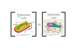 Copy of Prokaryotic and Eukaryotic Cells