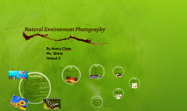 Natural Environment Photography