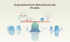 Organisatorische Betrachtung des FD-BVS