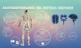 ANATOMOFISIOLOGIA DEL SISTEMA NERVIOSO
