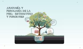 Copy of ANATOMÍA Y FISIOLOGÍA DE LA PIEL Y ANEXOS: ESTRUCTURA Y FUNC