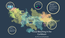 Copy of Copy of Coral Bleaching in the Caribbean