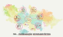 Copy of Programação Neurolinguística