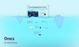 Orcas Endangered Ocean Animal